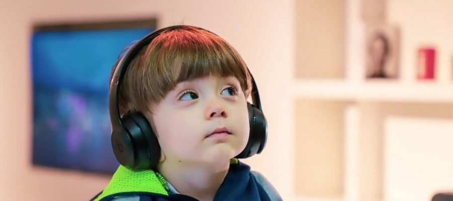 how the auditory system works